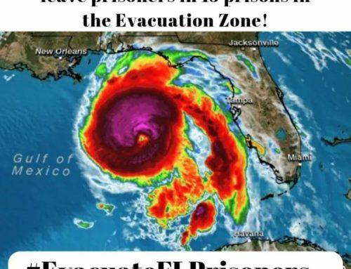 URGENT: Hurricane Michael Phone Zap