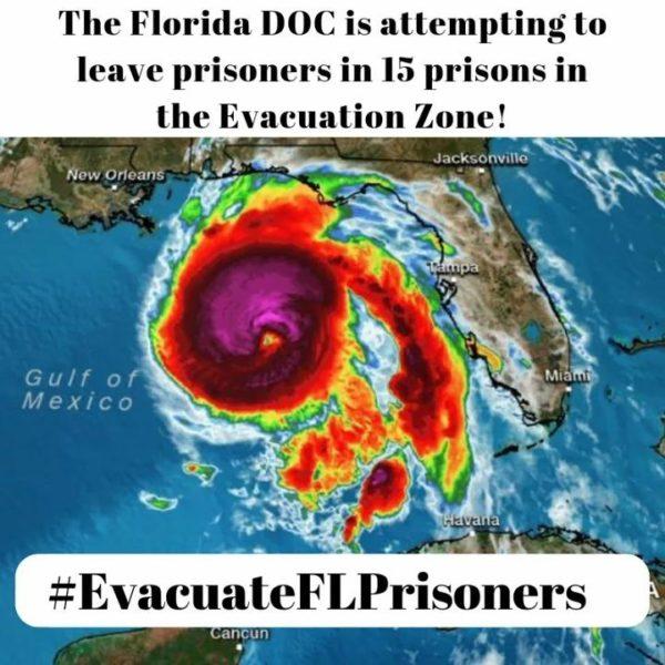 URGENT: Hurricane Michael Phone Zap - Mutual Aid Disaster Relief