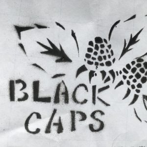 Blackcap Medic Collective